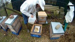 Bienen fuettern