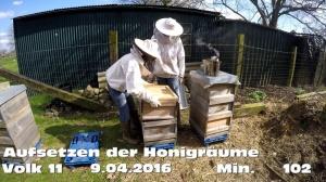 Aufsetzen der Honigraeume