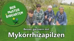 myko-special Beitragsbild
