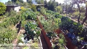 Hochbeete im Garten richtig bauen