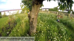 Garten mieten