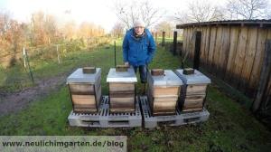 Bienen einwintern