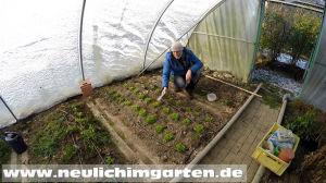 Selber bauen im Garten