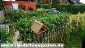 Saatgutvermehrung im Garten