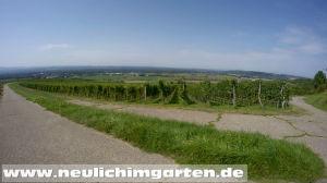 Weinbaugebiet