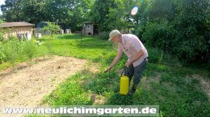 Finalsan im Garten