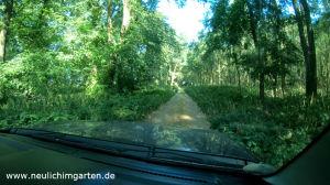 Biosphrenreservat Mittelelbe