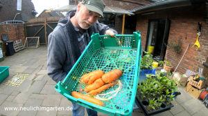 Karotten lagern fuer Selbstversorger