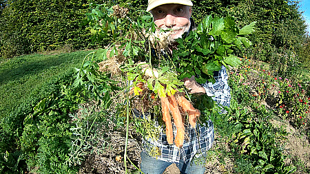 Gemüsebrühe selbst herstellen Beitragsbild